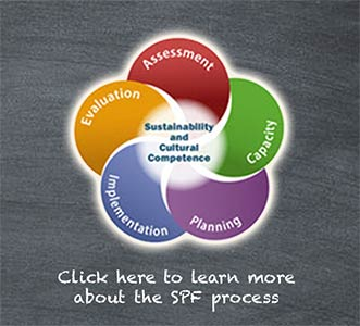 Click here to learn more about the SPF process